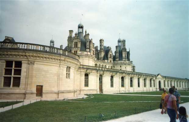 Castelli sulla Loira