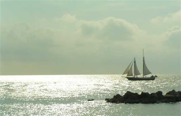 Bahía de Key West