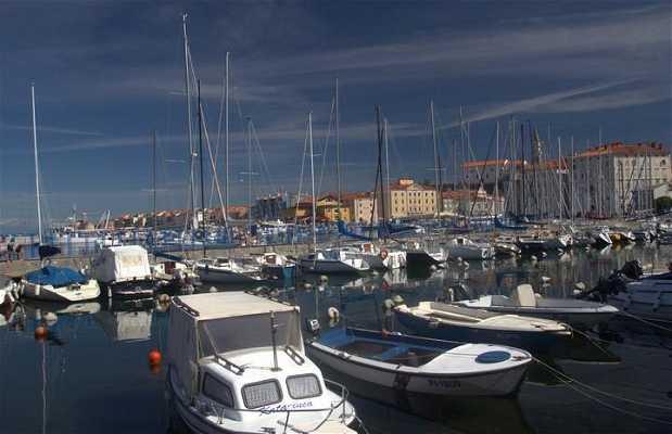 Puerto de Pirano