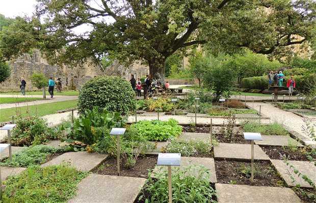 Jardín de Plantas Medicinales de la Abadía de Orval
