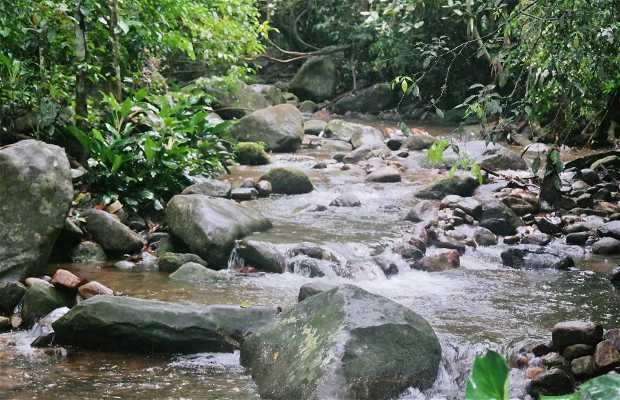 Parque Natural Municipal da Taquara