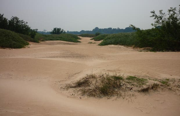 Playas del río Guaporé
