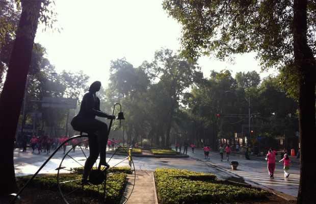 Carreras en Ciudad de México