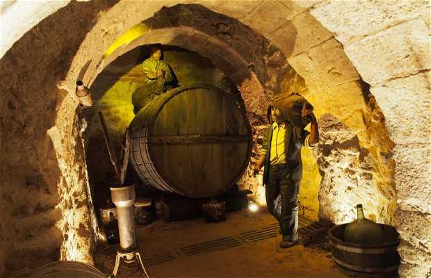 Bodegas de las Ánimas (Cellar of the Souls)