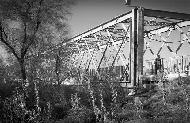 Antiguo puente de Titulcia