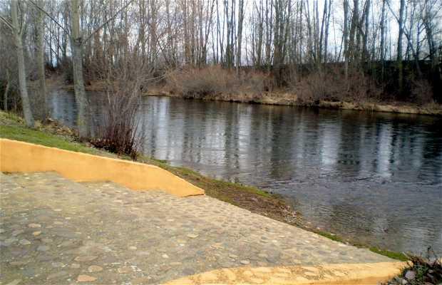 El río Porma a su paso por Villarente