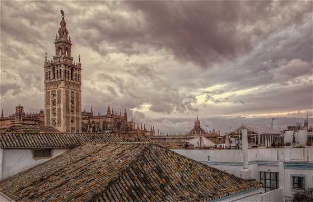 Terraza del Hotel Los Seises