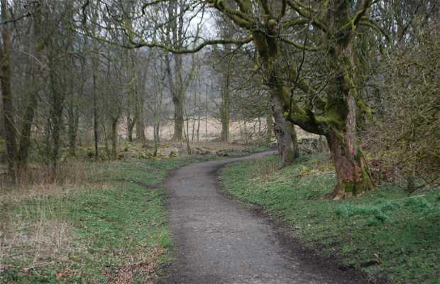 Bosques de Mugdock