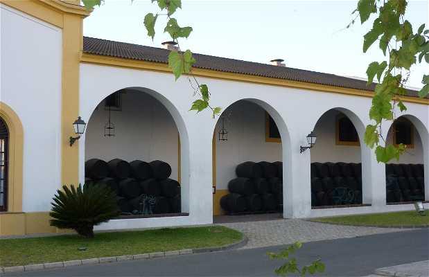Bodegas Y Yeguadas Real Tesoro
