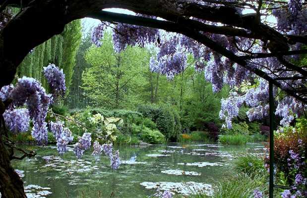 Fundación Claude Monet