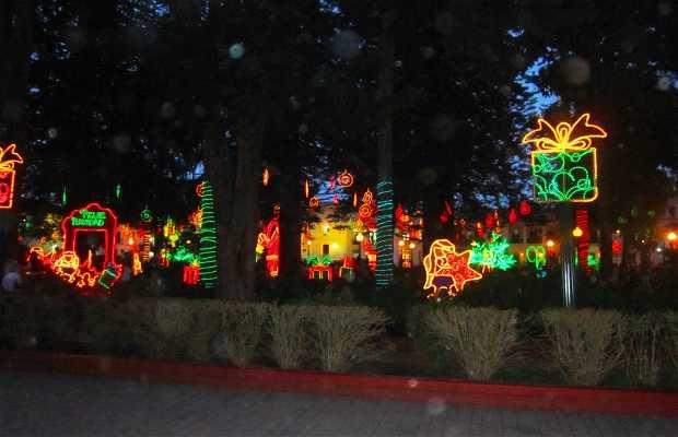 Navidad en Parque Caldas