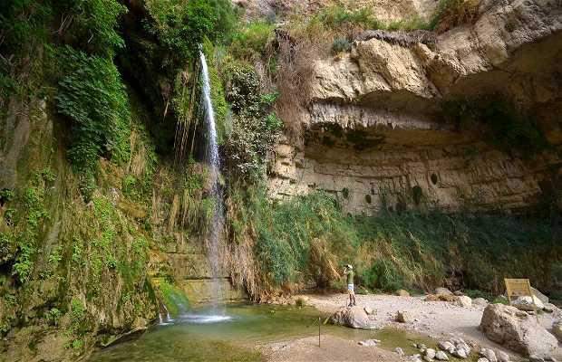 Reserva natural En Gedi