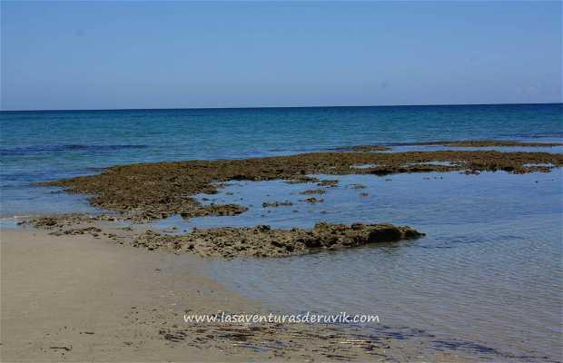 Emmagen Beach