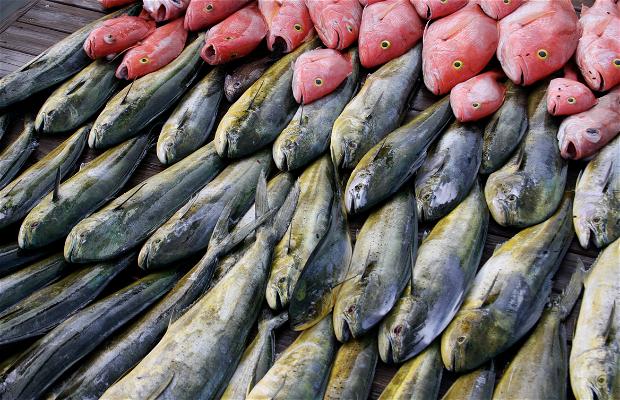 Tu´imatamoana fish market