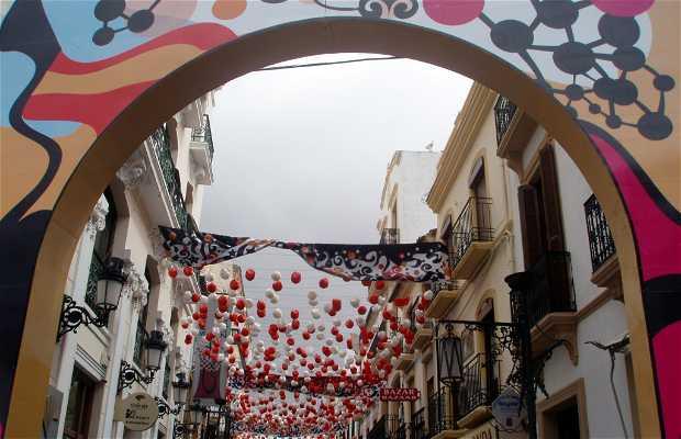 Feria y Fiestas de Pedro Romero