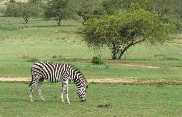 Scotia Safaris Game Farm