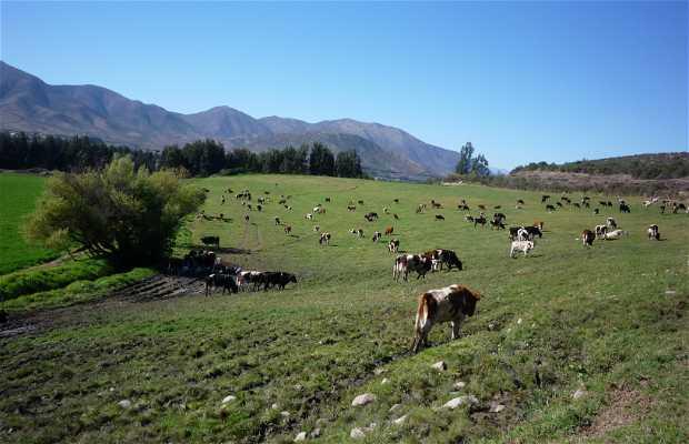 Villages of La Serena