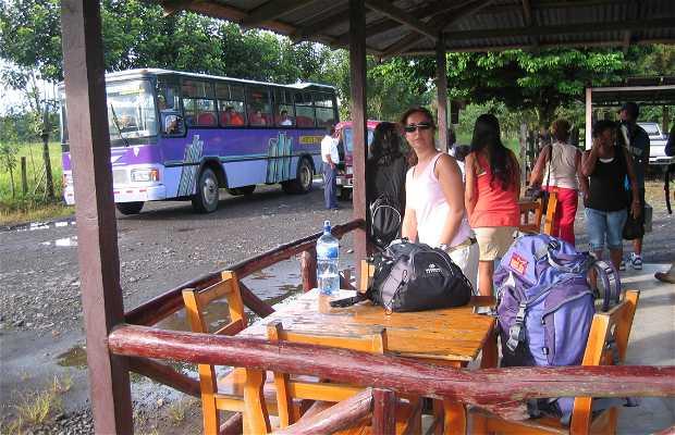 Terminal de buses cariari
