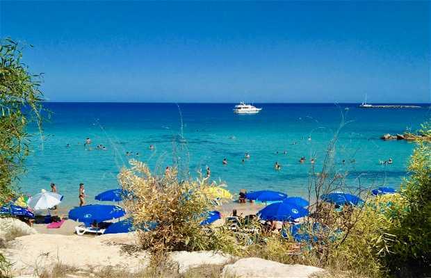 Playa Vizakia