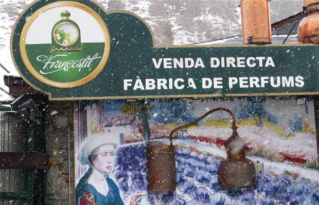 Perfumería Francestil