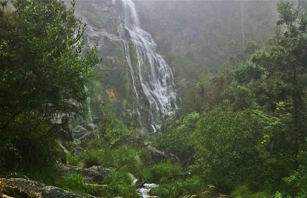 Cascada de Cardanoxo