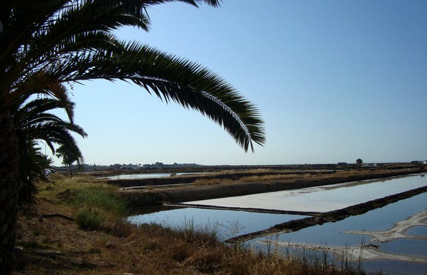 Salinas de Tavira