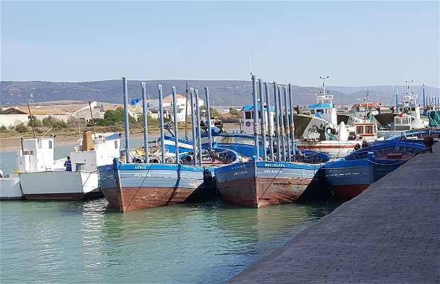 Puerto Viejo de Barbate
