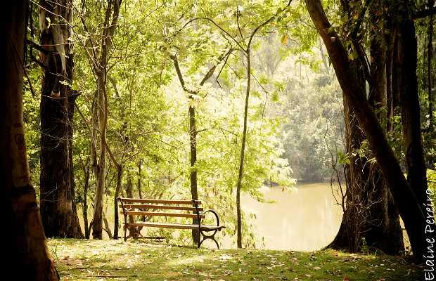 Parque Natural dos Esportes Chico Mendes
