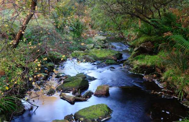 Natural park of Glenevin