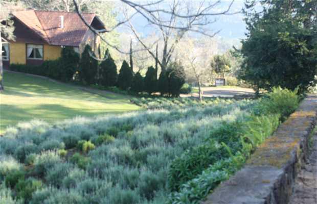 Le Jardin - Parc de Lavande