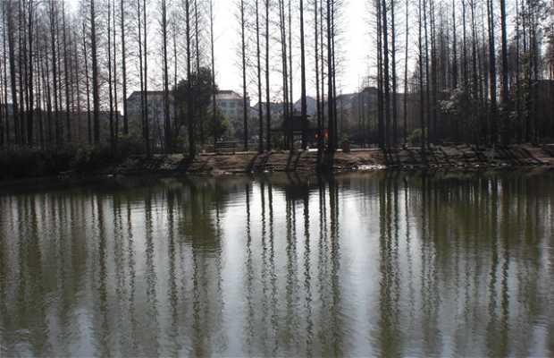 Municipal park of Jiangyin
