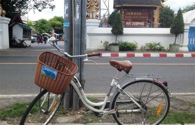 En bici por Chiang Mai