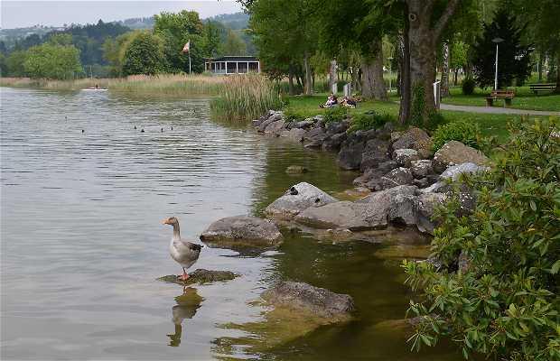 Lago Sempach