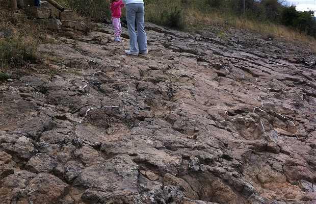 Footprints of dinosaurs in Hornillos