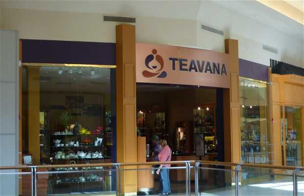 Tienda Teavana, Tampa, Estados Unidos