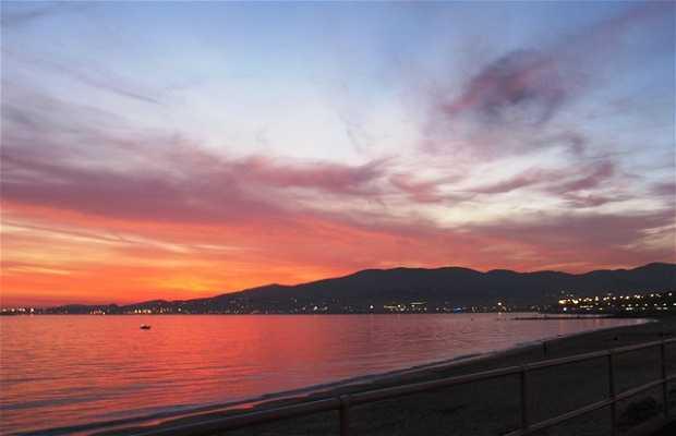 Promenade of Palma