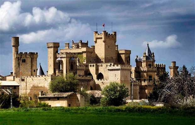 Castello del Palacio Real di Olite