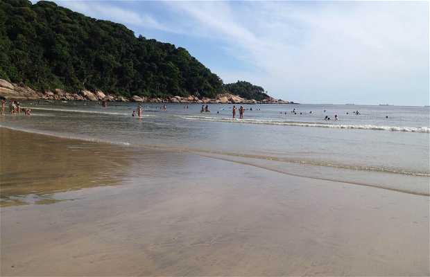 Playa de Guaiúba