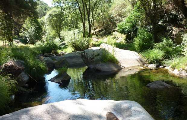 Arbillas River