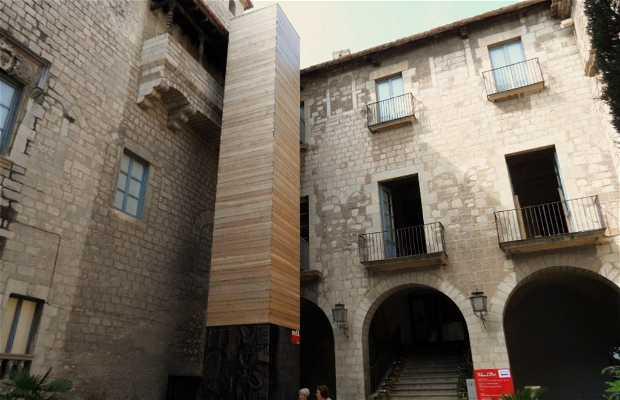 Museo de Arte - MD'A