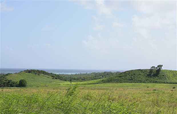 Camino Anse Trabaud