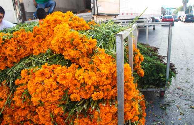 La Flor de Cempasúchil
