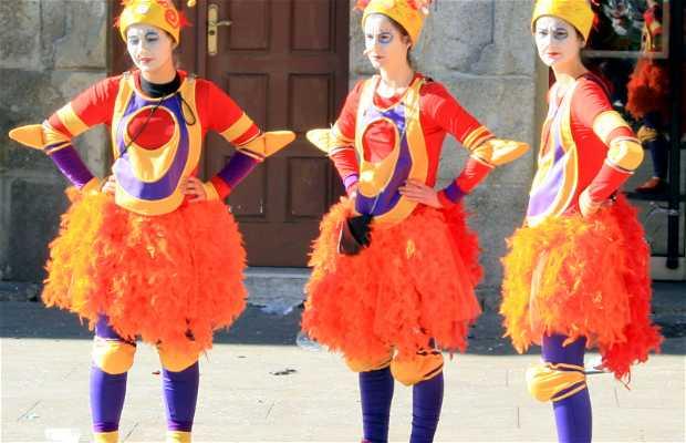 Entroido / Carnaval de Xinzo de Límia