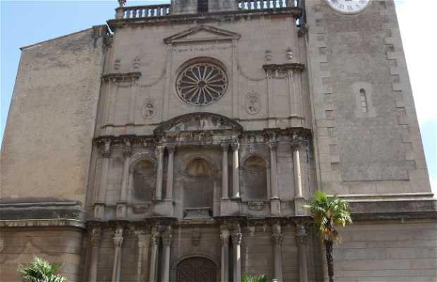 Iglesia de Sant Esteve, Olot