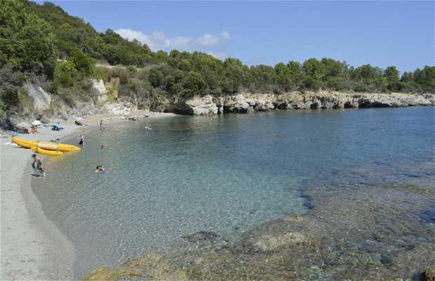 Playa A Fava
