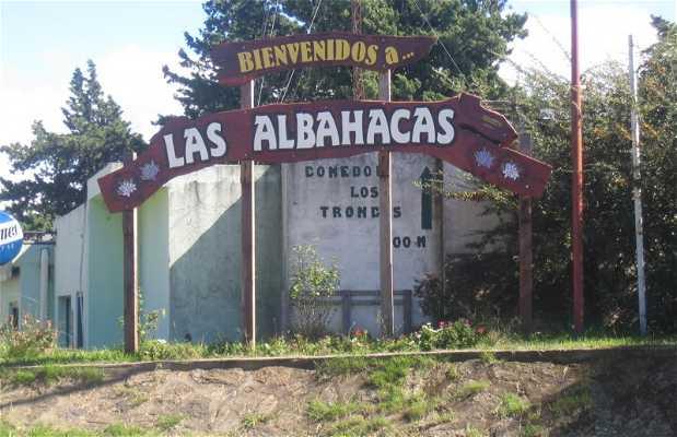 Las Albahacas