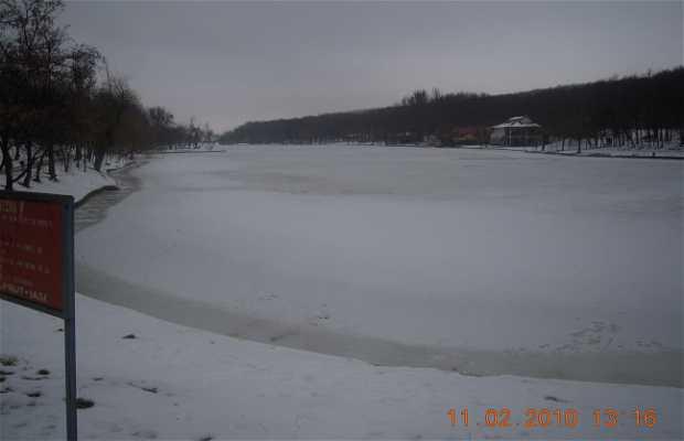 Ciric Lake