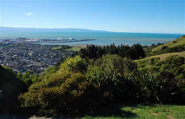 Centre de la Nouvelle Zélande