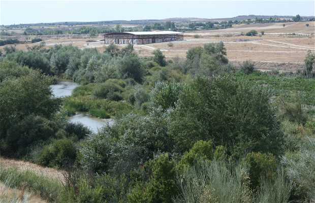 Parque Arquelógico de Carranque
