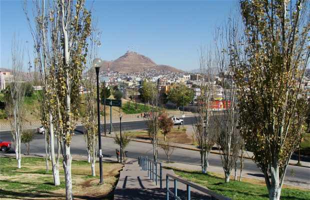 Parque El Palomar